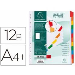 Separadores cartulina Exacompta Din A4+ juego de 12 blanco